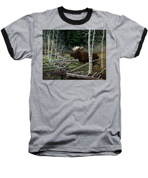 Mountain Monarch Baseball T-Shirt by Craig T Burgwardt