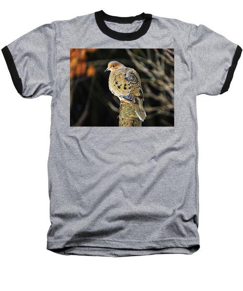 Mourning Dove On Post Baseball T-Shirt