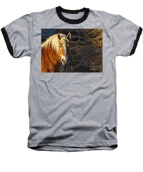 Mr. Handsome Baseball T-Shirt