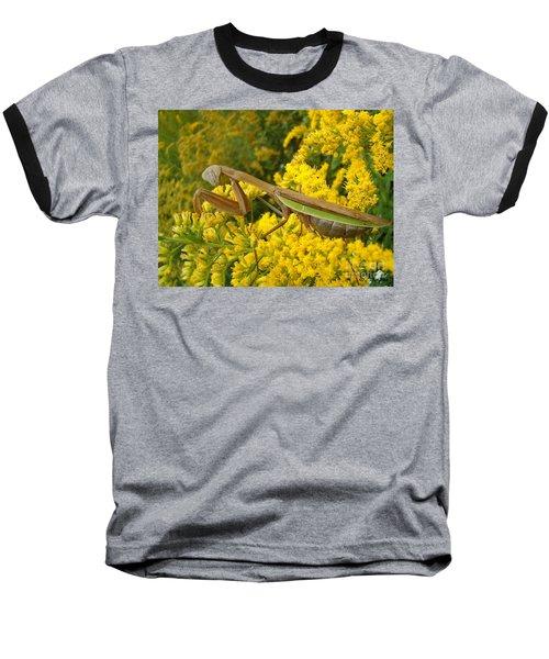 Baseball T-Shirt featuring the photograph Mr. Mantis by Sara  Raber