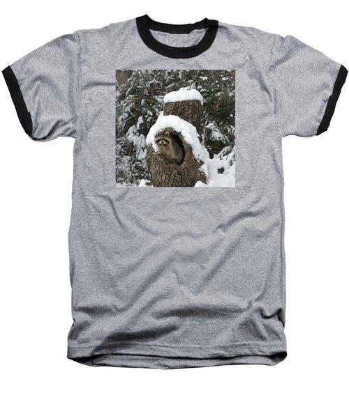 Mr. Raccoon Baseball T-Shirt by Diane Bohna