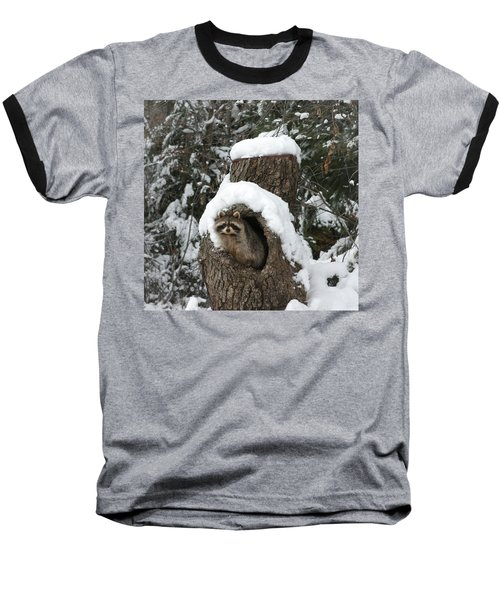 Mr. Raccoon Baseball T-Shirt