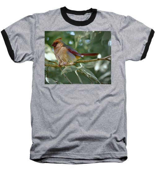 Mrs. Cardinal Baseball T-Shirt