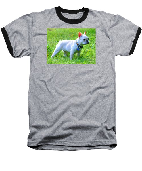 Ms. Quiggly - French Bulldog Baseball T-Shirt