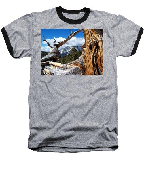 Mt. Charleston Thru A Tree Baseball T-Shirt by Alan Socolik