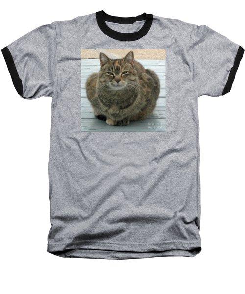 Muffin The Feral Cat Baseball T-Shirt
