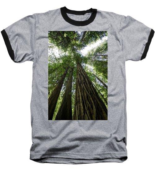Muir Woods I Baseball T-Shirt