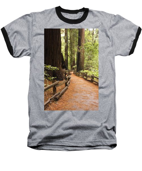 Muir Woods Trail Baseball T-Shirt