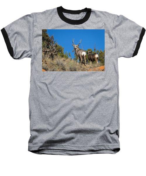 Mule Deer Buck Baseball T-Shirt