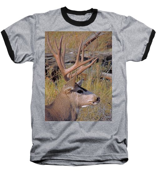 Baseball T-Shirt featuring the photograph Mule Deer by Lynn Sprowl