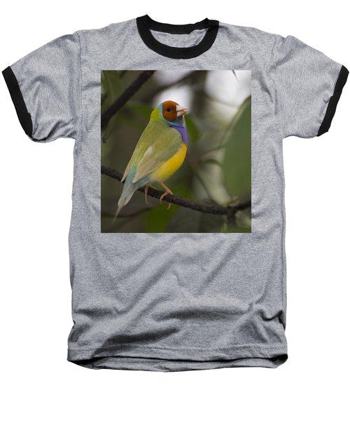 Multicolored Beauty Baseball T-Shirt