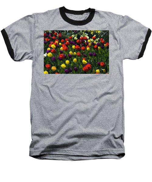Colorful Tulip Field Baseball T-Shirt