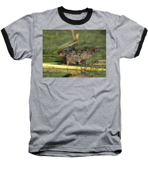 Baseball T-Shirt featuring the photograph Munchkins by James Peterson