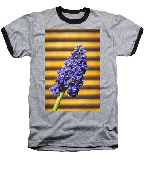 Muscari And Rust Baseball T-Shirt by Caitlyn  Grasso