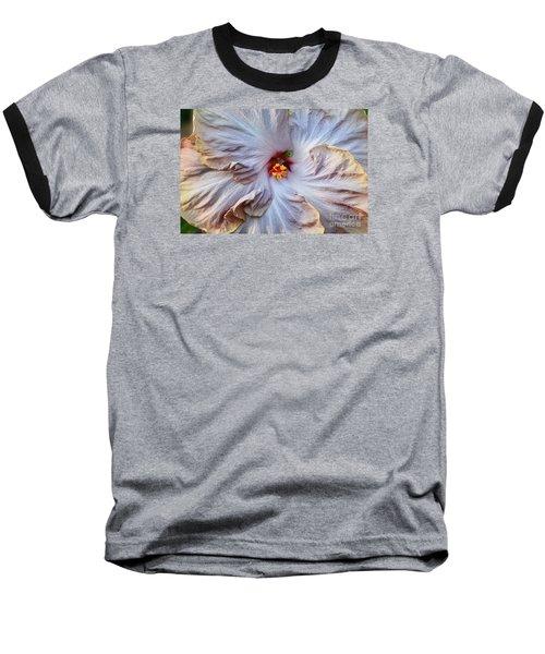 Muted Hibiscus Baseball T-Shirt by Cindy Manero