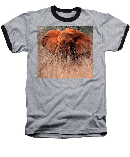 My Elephant In Africa Baseball T-Shirt