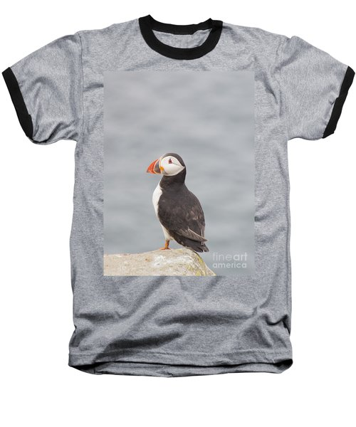 My Feathered Friend Baseball T-Shirt