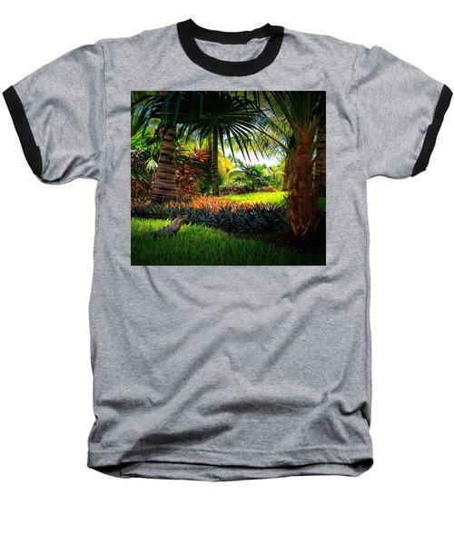My Pal Iggy Baseball T-Shirt by Robert McCubbin