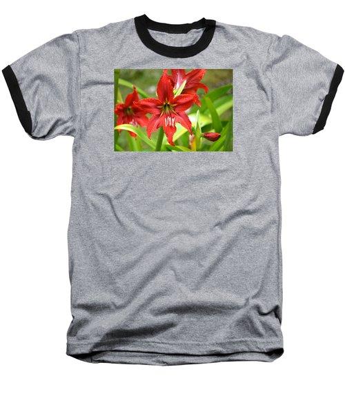 My Red Daylily...after The Rain Baseball T-Shirt