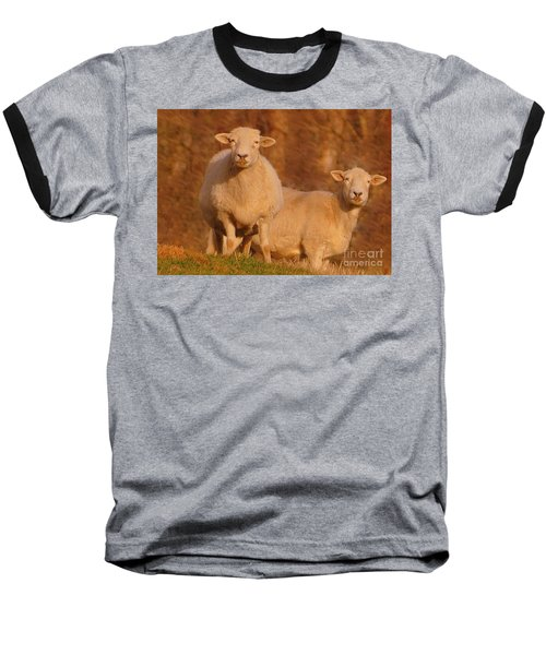 Baseball T-Shirt featuring the photograph My Sheep ...   by Lydia Holly