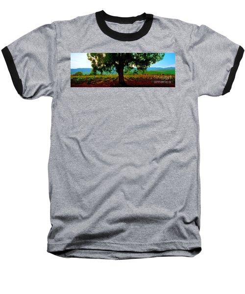 Napa Valley Winery Roadside Baseball T-Shirt