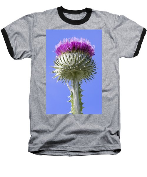 National Flower Of Scotland Baseball T-Shirt