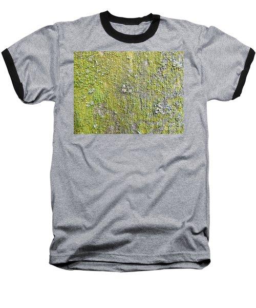 Natural Abstract 1 Baseball T-Shirt by Paulo Guimaraes