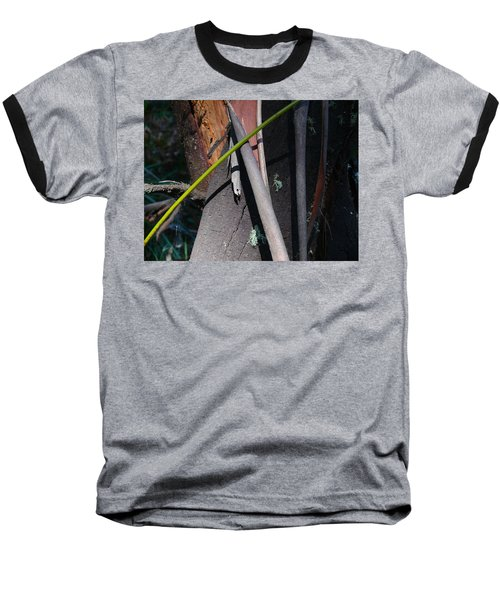 Natural Bands 3 Baseball T-Shirt by Evelyn Tambour