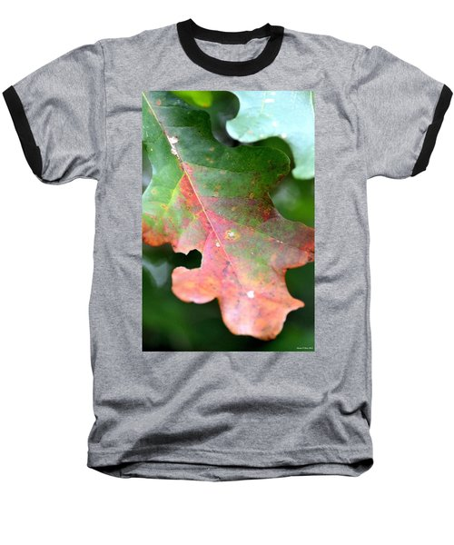 Natural Oak Leaf Abstract Baseball T-Shirt by Maria Urso