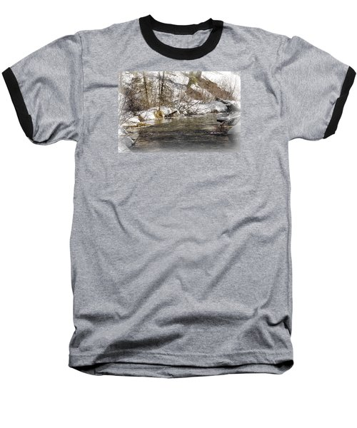 Baseball T-Shirt featuring the photograph Nature's Direction by Janie Johnson