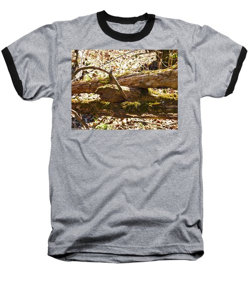 Baseball T-Shirt featuring the photograph Natures Fence by Nick Kirby
