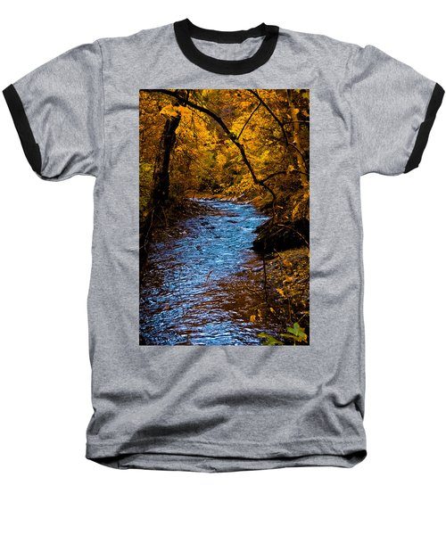 Natures Golden Secret Baseball T-Shirt
