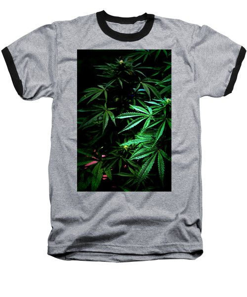 Baseball T-Shirt featuring the photograph Nature's Medicine by Jeanette C Landstrom