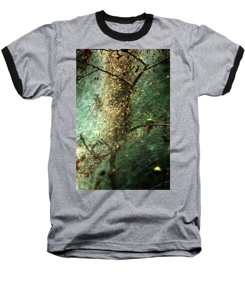 Natures Past Captured In A Web Baseball T-Shirt