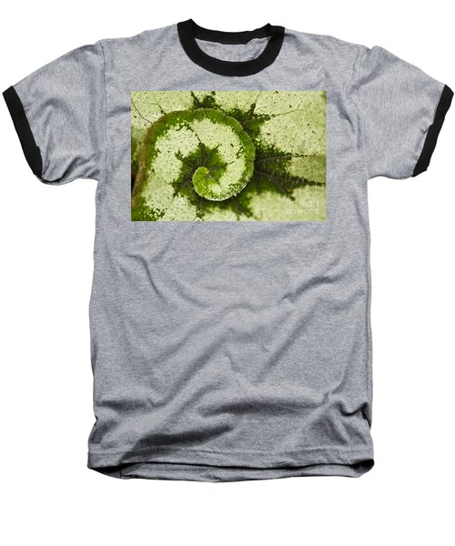 Natures Spiral Baseball T-Shirt