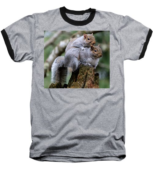 Fifty Shades Of Gray Squirrel Baseball T-Shirt by Kym Backland