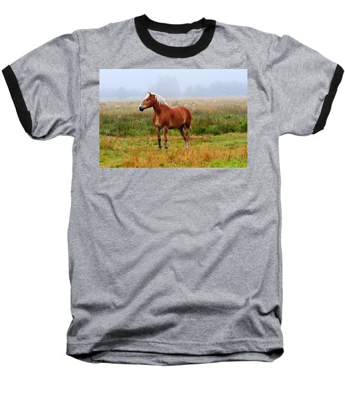 New Brunswick Horse Baseball T-Shirt