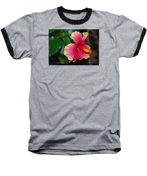 New Every Morning - Hibiscus Baseball T-Shirt by Connie Fox