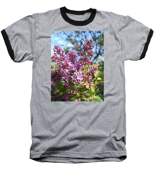 Purple Lilac Baseball T-Shirt by Eunice Miller