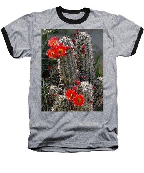 New Mexico Cactus Baseball T-Shirt