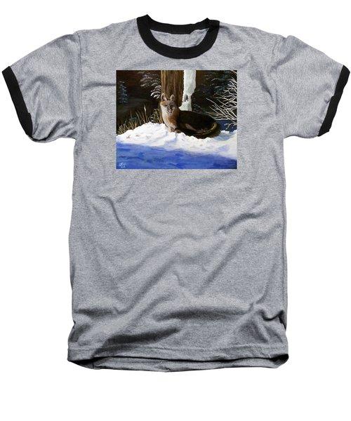 New Mexico Swift Fox Baseball T-Shirt by Sheri Keith