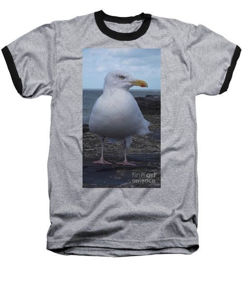 New Quay Gull  Baseball T-Shirt