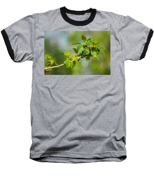 Newborn - Featured 3 Baseball T-Shirt by Alexander Senin