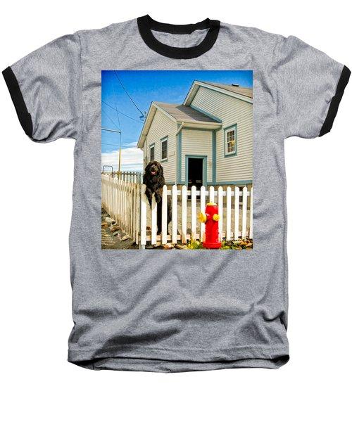 Newfoundland Dog In Newfoundland Baseball T-Shirt