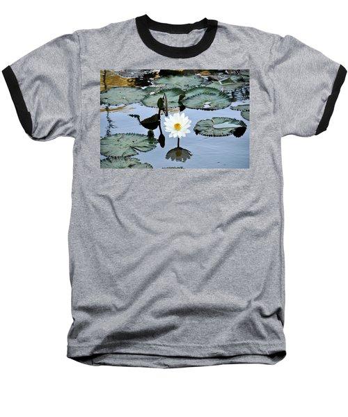 #night Blooming Water Lily Baseball T-Shirt