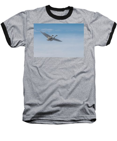 Trumpeter Swans Tandem Flight Baseball T-Shirt by Patti Deters