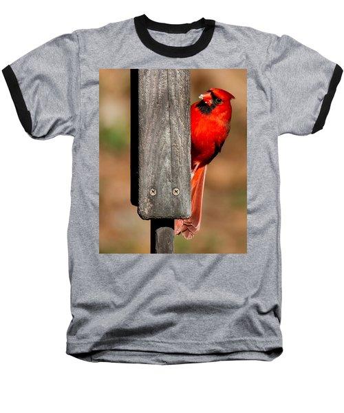 Baseball T-Shirt featuring the photograph Northern Cardinal by Robert L Jackson