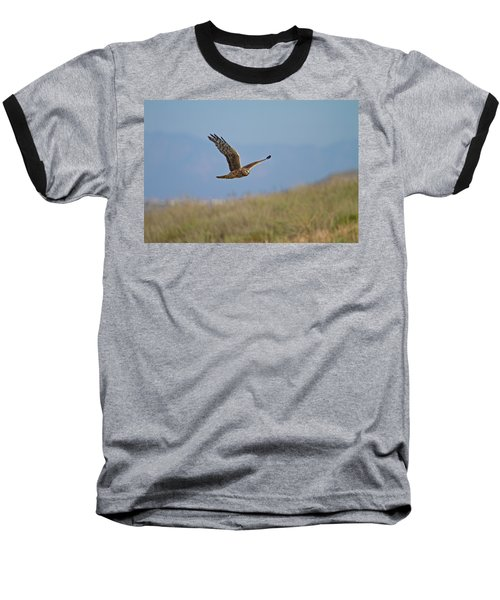 Northern Harrier In Flight Baseball T-Shirt