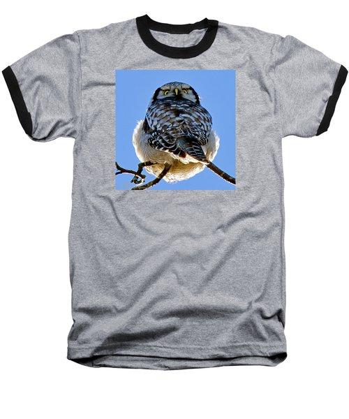 Northern Hawk Owl Looks Around Baseball T-Shirt