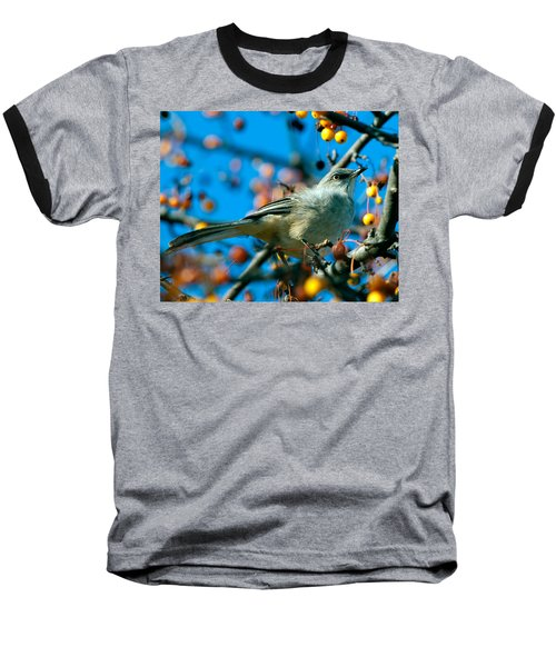 Northern Mockingbird Baseball T-Shirt